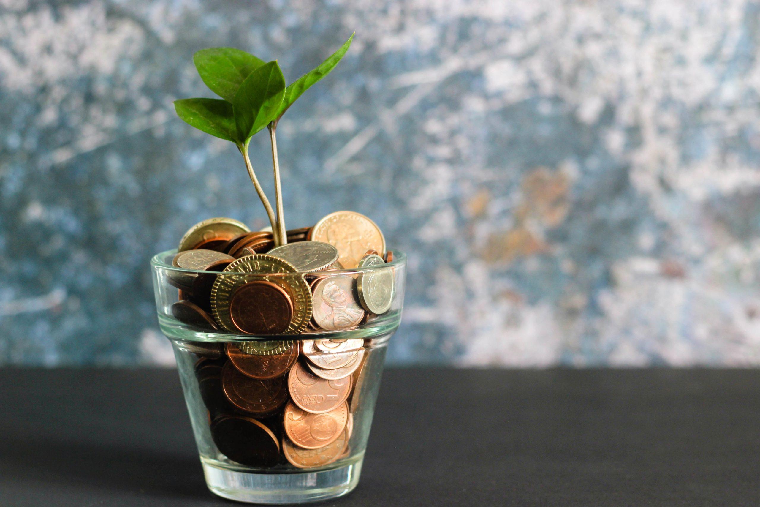 E-training Fondsenwerving